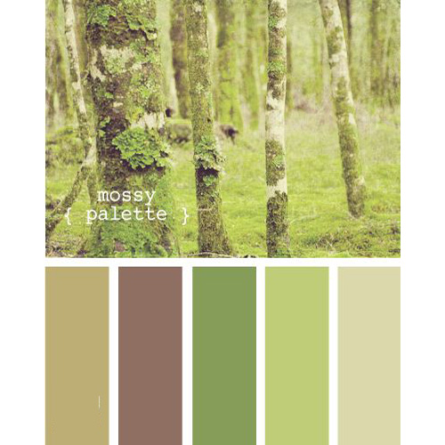 Inspirational Natural Color Palettes Six Different Ways