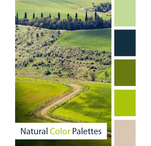 Nature Color Palette Rocks