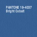 Bright-Cobalt1