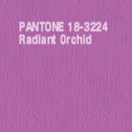 Radiant-Orchid-1