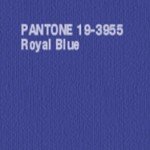 Royal-Blue-1